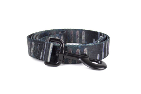 Urban Stripe Leash