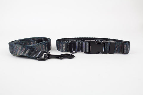 Urban Stripe Collar  + Leash