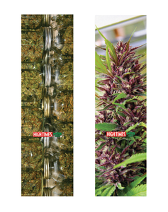 MOB grip - Lija High Times Harvest 9.0 x 33 (1864685748283)