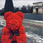 3D Printed Hoodie Luxury Rose Teddy Bear - From Moon Landers