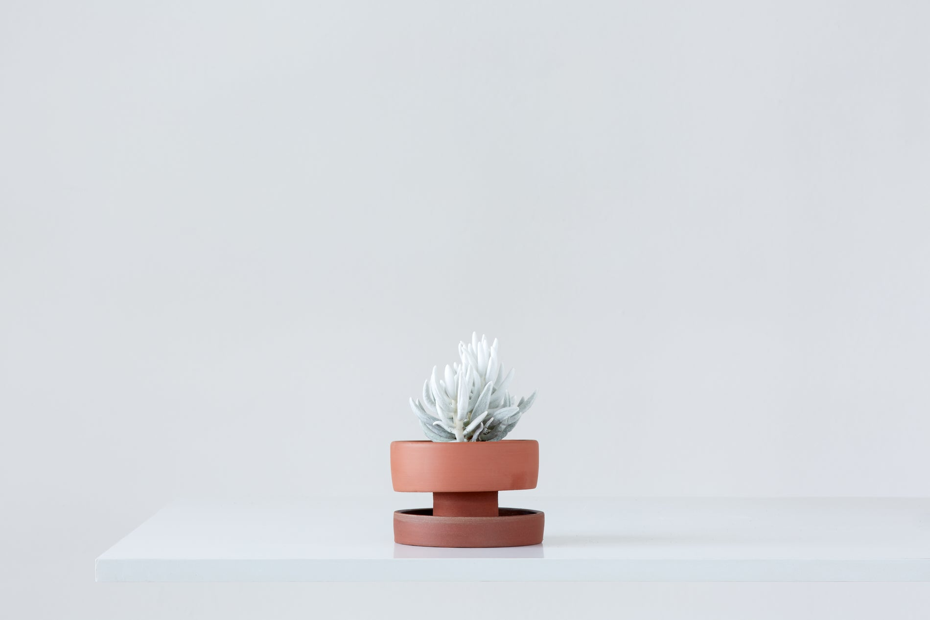 Set of flower pots - red clay