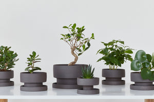 Set of flower pots - dark chamotte