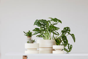 Set of flower pots - cream
