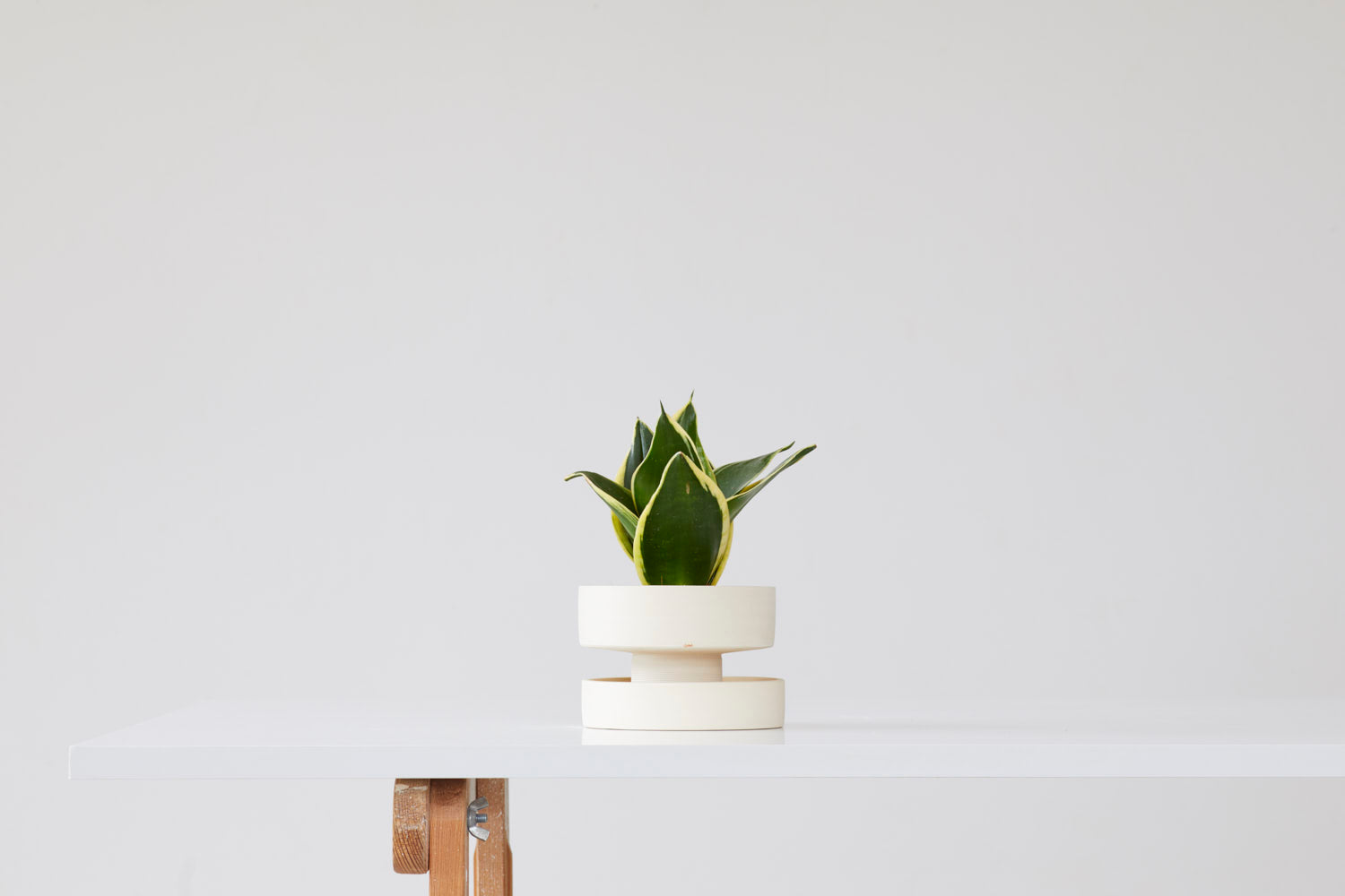 Flower pot - cream