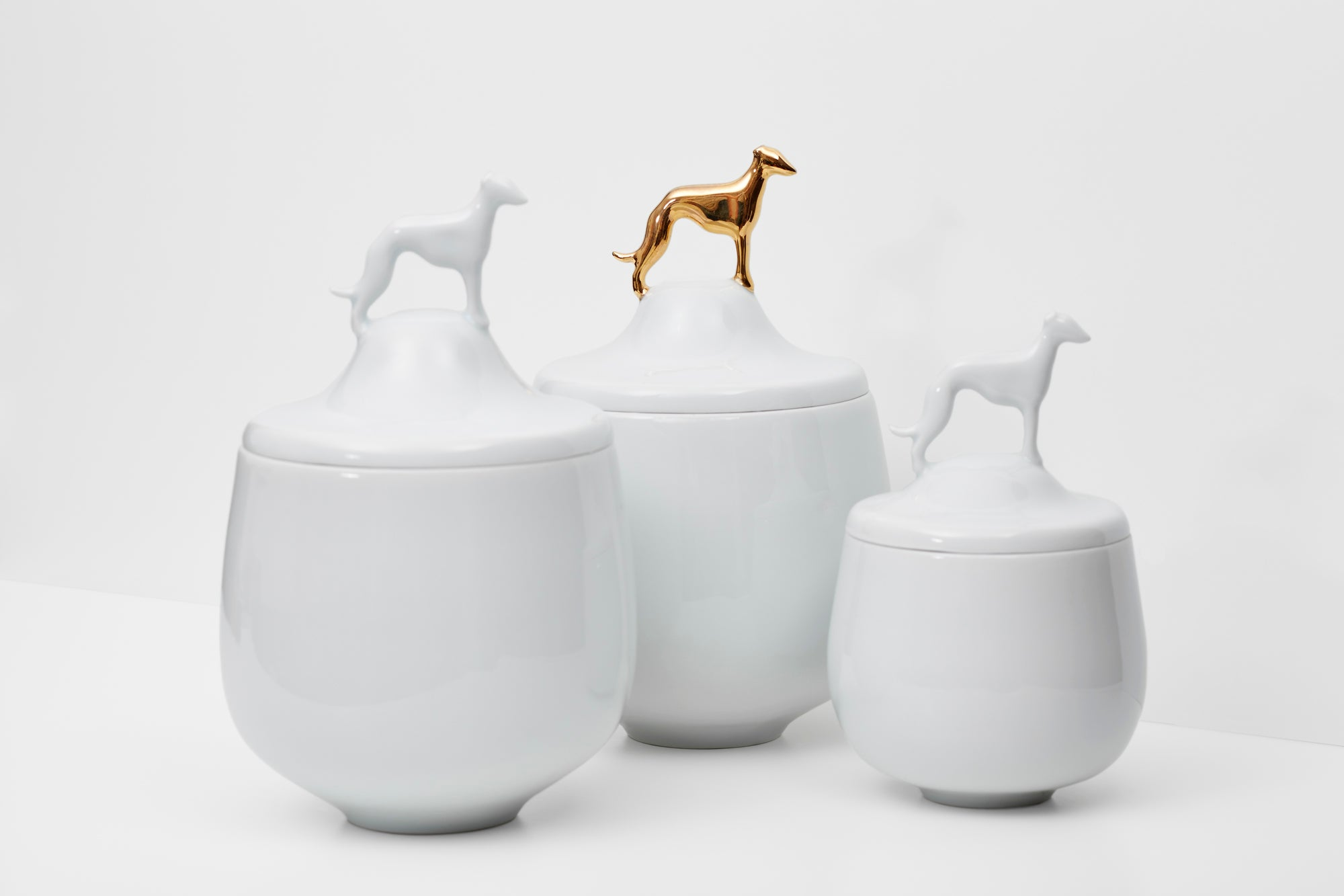 Greyhound porcelain dose