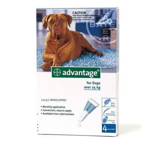 Advantage Dog Over 25kg Flea & Lice Spot-On Treatment