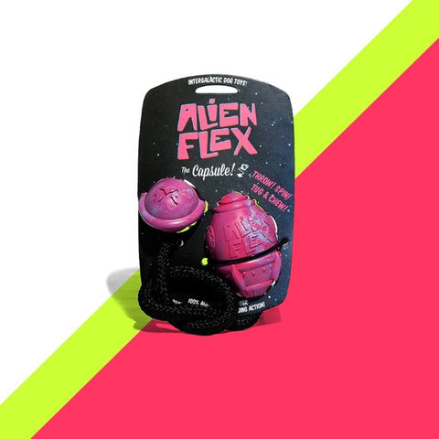 Alien Flex Capsule & Planet Dog Toy