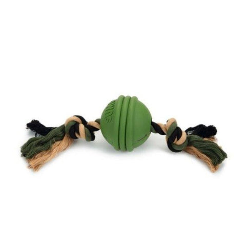 Beeztee Fit Ball Dog Toy - Green