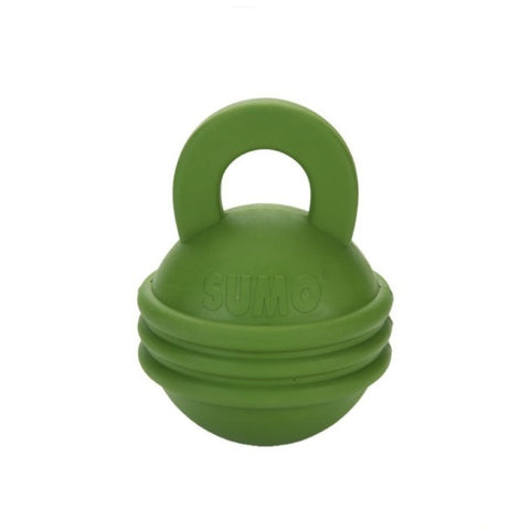 Beeztee Kettlebell Dog Toy - Green