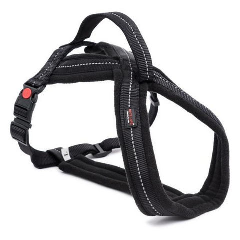 Dog's Life  Black Adventure Harness