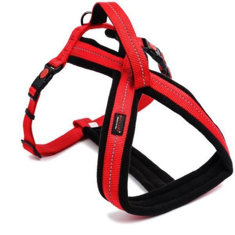 Dog's Life Red Adventure Harness With Handle