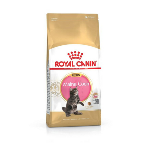 ROYAL CANIN Maine Coon Kitten Food