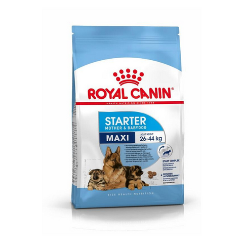 ROYAL CANIN Maxi Starter Mother & Babydog Puppy Food