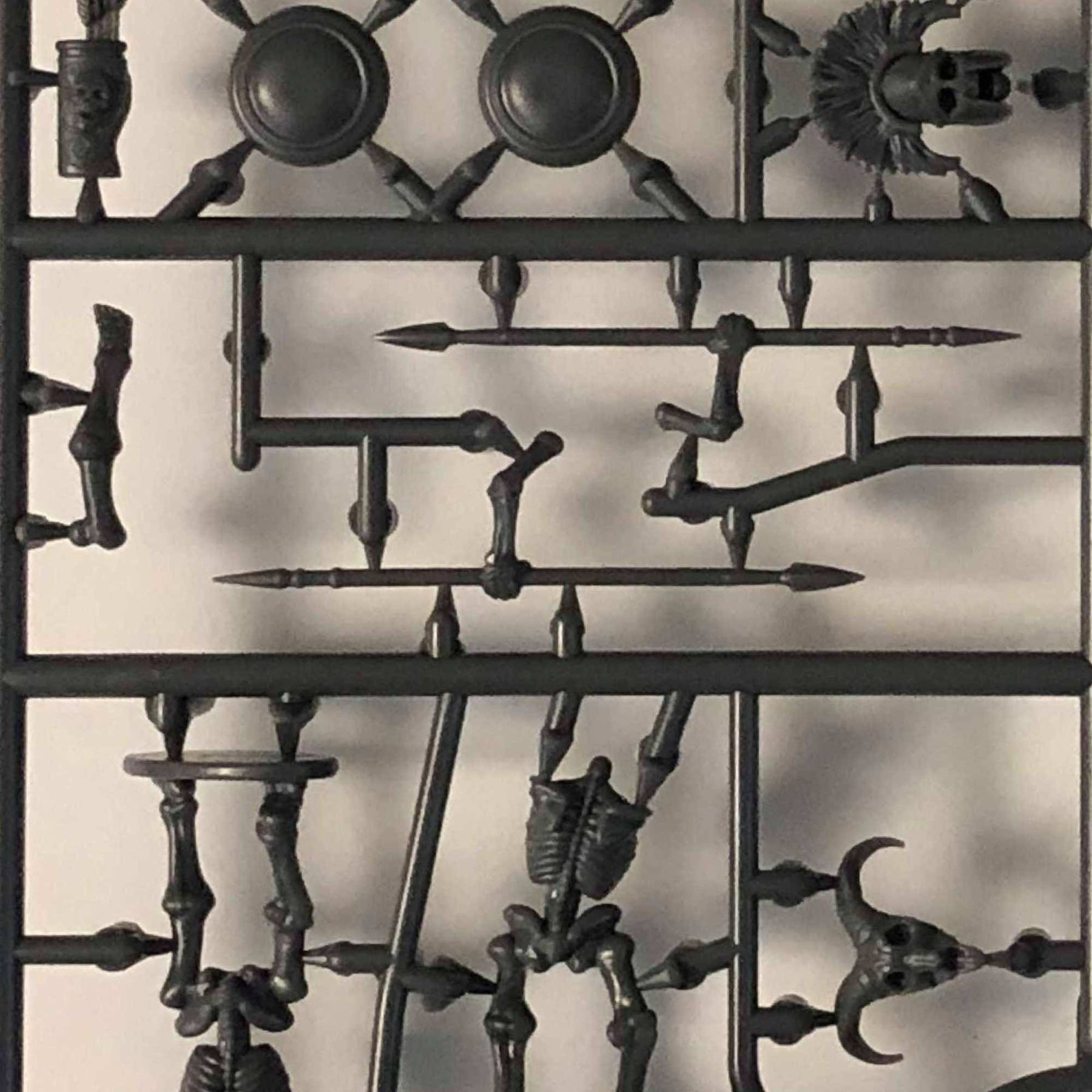 A Look at the Skeleton Sprue