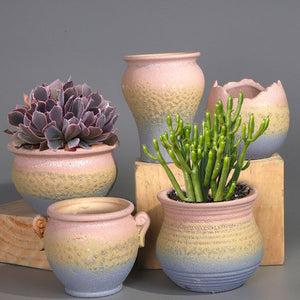 Set of 5 - Ceramic succulent pots with drainage holes