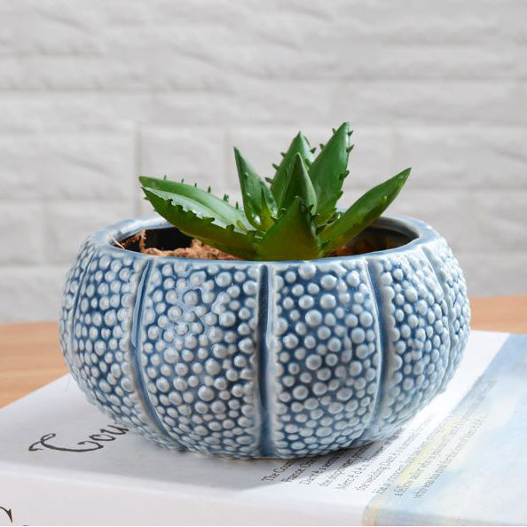 Sea Urchin Design Ceramic  Pot / O01