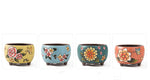 Quality Ceramic Hand-painted Succulent Pot - 12cm Diameter 9.5cm Height