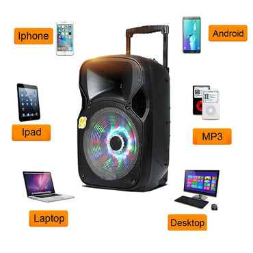 Portable 12 inch LED Bluetooth PA Party Karaoke Speaker Loudspeaker System Set with Wireless Mic for DJ Dance Show
