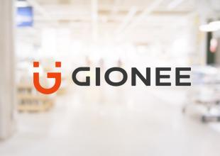 Gionee Pioneer P5W Mobile Covers