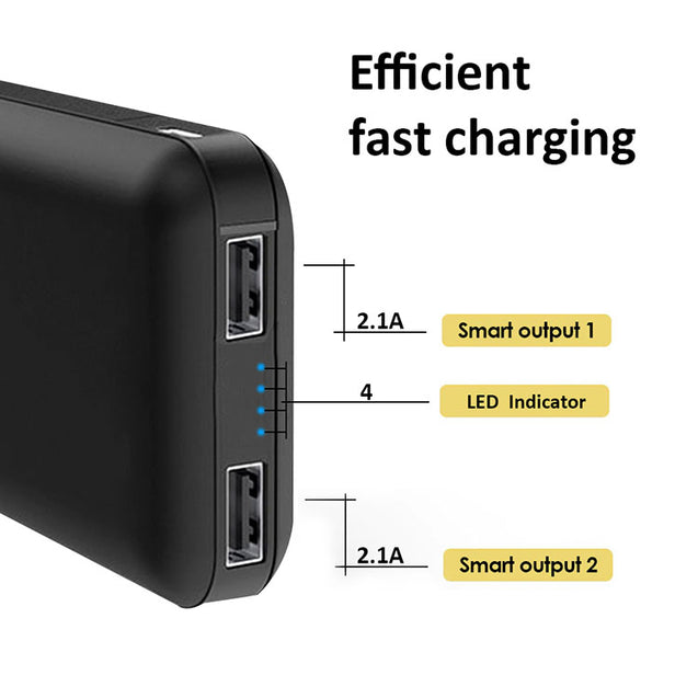PTron Dynamo Z Dual USB 10000mAH Power Bank for All Smartphones (Black)
