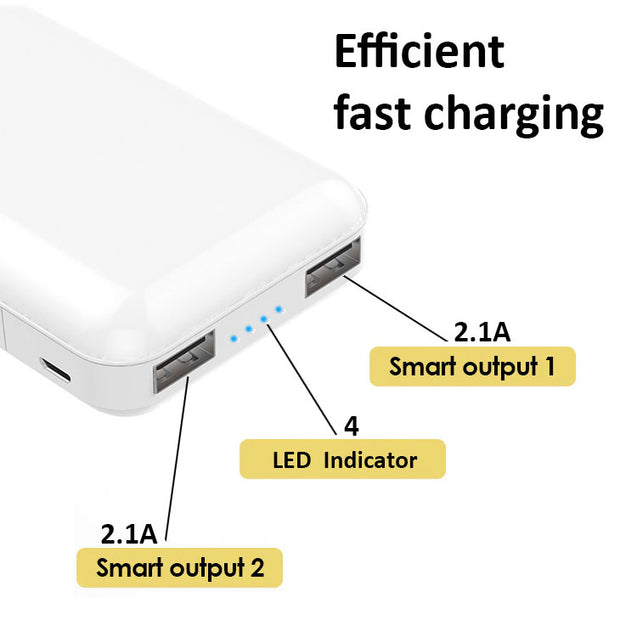 PTron Dynamo Z Dual USB 10000mAH Power Bank for All Smartphones (White)