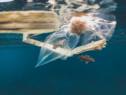 We are still working towards reducing plastic use to improve the oceans and the rest of the environment. Picture credit: Naja Bertolt Jensen on Unsplash