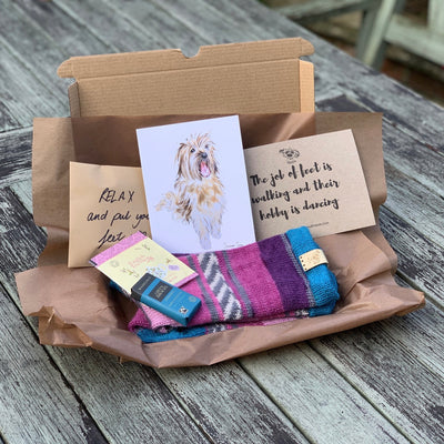 Bespoke Swizzle Socks - Swizzle and friends