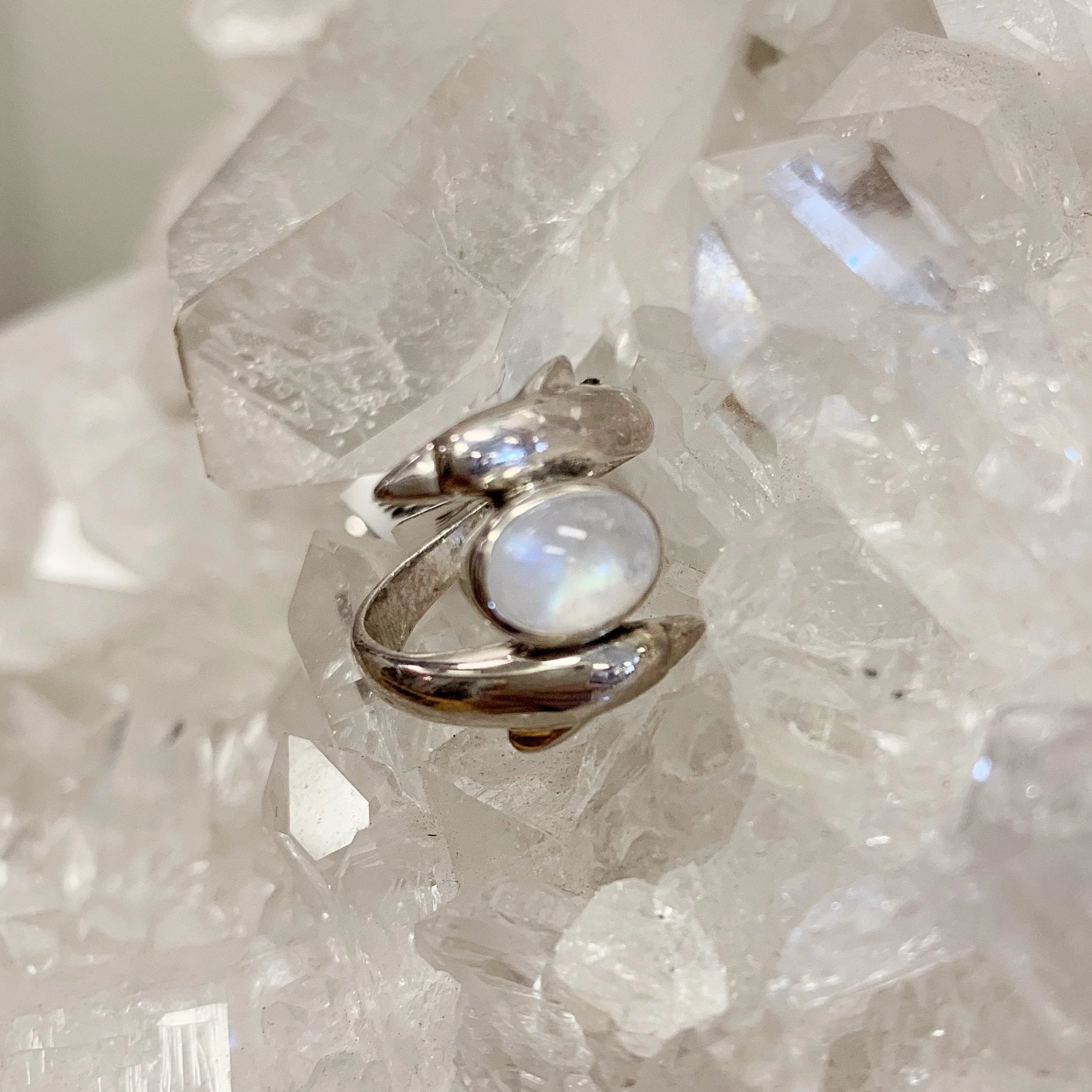 Rainbow Moonstone Dolphin Ring