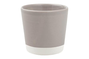Shell Bisque Espresso Grey Set of 2
