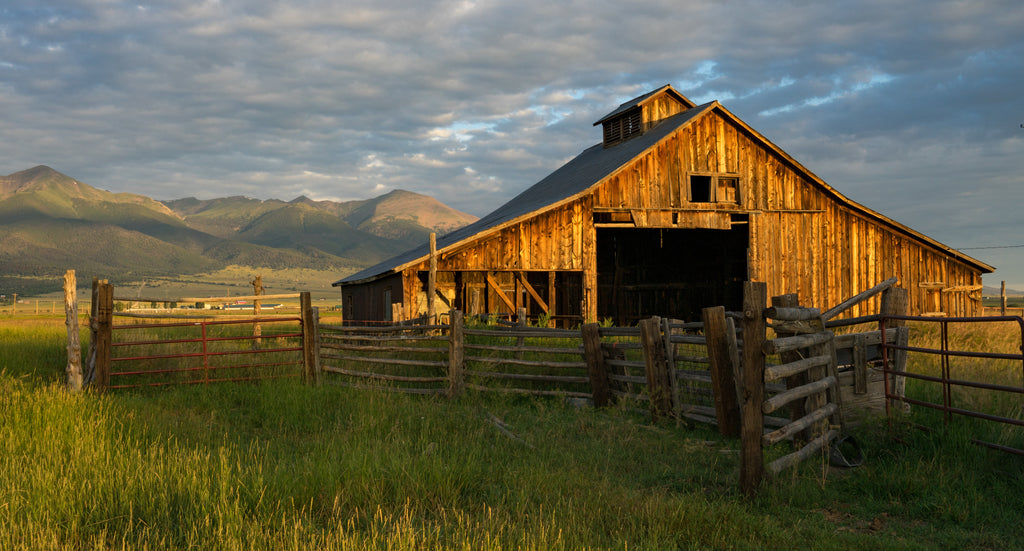 Care and Maintenance of Barn Wood