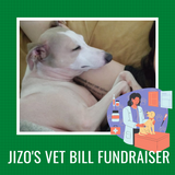 Jizo Vet Bill Fundraising Shop Credit