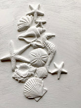 Load image into Gallery viewer, SEA SHELLS 6x10 Decor Mould