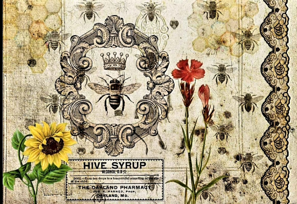 DECOUPAGE QUEEN RICE PAPER- HIVE SYRUP 8.3 X 11.7