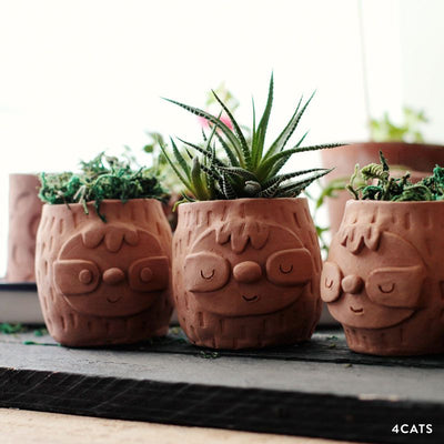 Sloth Planter—Family & Adult