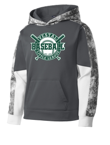 Vestal Little League Youth Granite Hoodie