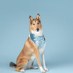 Ice Blue Crushed Velvet Bandana