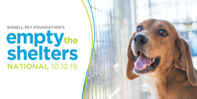 Empty the Shelters October 12th @ BISSELL Headquarters