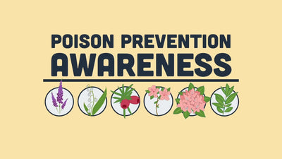 Which plants are poisonous to pets?