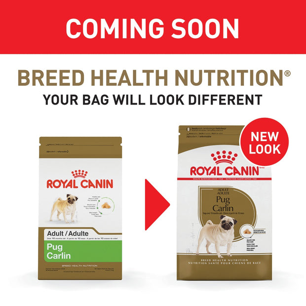 Royal Canin Breed Health Nutrition Pug Adult Dry Dog Food