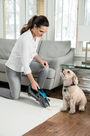 Pet Stain Eraser™ Portable Carpet Cleaner | 2164A