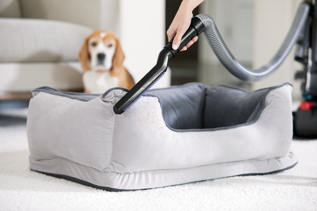 CleanView® Swivel Rewind Pet Vacuum Cleaner | 2256