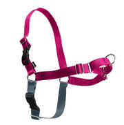 PetSafe Easy Walk Raspberry & Gray Dog Harness