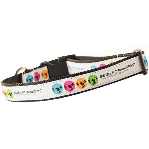 Paw it Forward Collection - Medium/Large Dog Collar | 19527