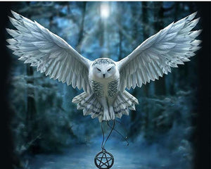 snowy owl of harry potter diy easy owl paint by number kits