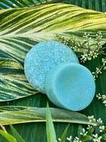Succulent Shampoo and Conditioner Bars