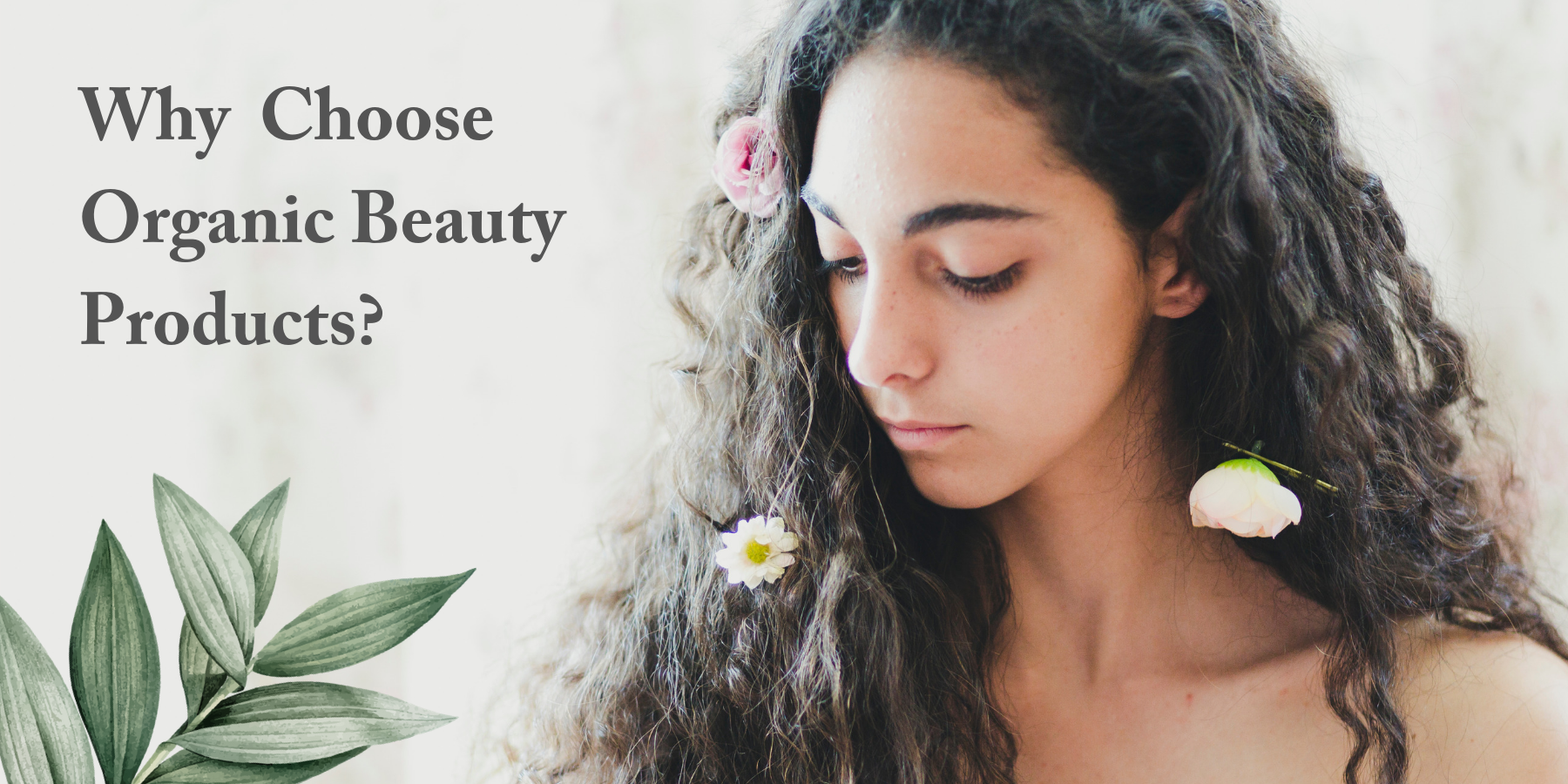 Why Choose to Organic Beauty Products?
