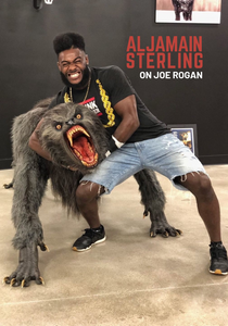 Aljamain Sterling on Joe Rogan