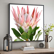 Load image into Gallery viewer, South Africa Protea Pink King Flower Canvas