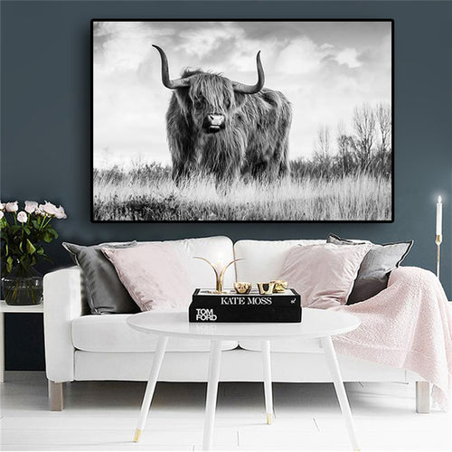 Black and White Freedom Highland Cow Canvas