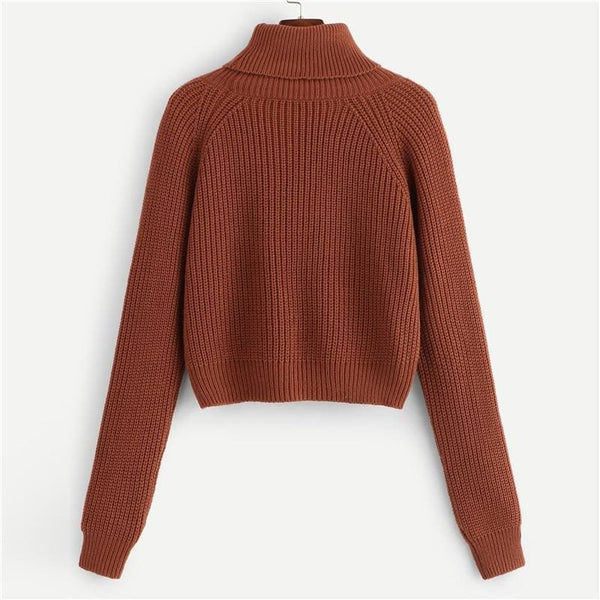 Turtleneck Ribbed Knit Crop Sweater - Sweater